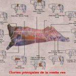 Cortes de carne vacuno argentinos.