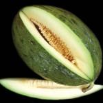 El melón